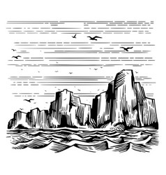 sea cliffs and seagulls landscape vector image