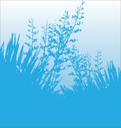 blue flax vector image