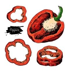 Pepper hand drawn set Vegetable artistic vector image vector image