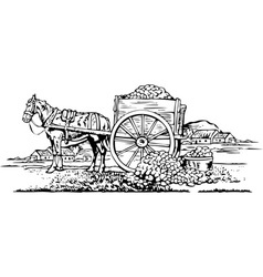 Horse Cart vector image