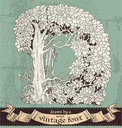 magic grunge forest hand drawn by vintage font -D vector image vector image