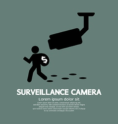 Surveillance Camera Graphic vector image vector image