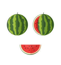 watermelon vector image