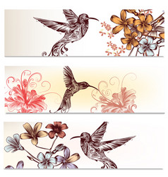 Brochures set with hummingbirds and flowers vector