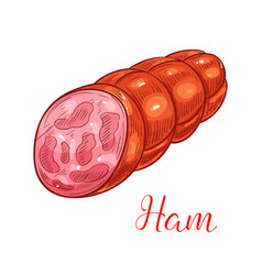 Ham sausage sketch for meat food design vector