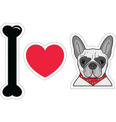 I love french bulldog with scarf vector image