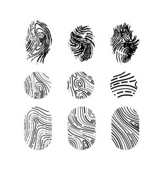set of different imprints of the thumb of the vector image
