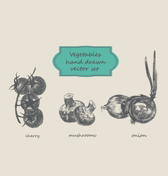 vegetables hand drawn set cherry vector image