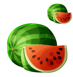 watermelon cartoon icon isolated on white vector image