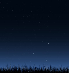 Night sky and grass vector image