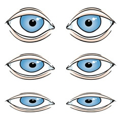 Cartoon Eyes vector image vector image