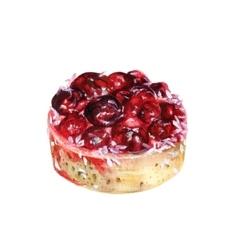 Watercolor cherry cake vector image vector image