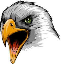 A eagle head mascot in the white vector