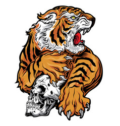 animals angry tiger yellow red skull vector image