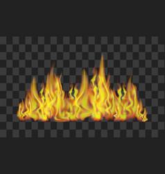fire line on transparent background vector image