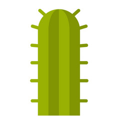 Green cactus plant icon isolated vector