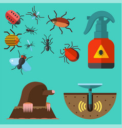 Home pest insect control expert vermin vector