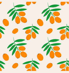 seamless pattern with sea buckthorn berries vector image