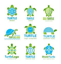 turtle logo ocean wild animal stylized symbols vector image