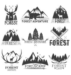 set of forest theme emblems Vintage badges vector image vector image