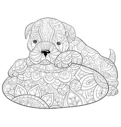 Adult coloring bookpage a cute dog on a pillow vector