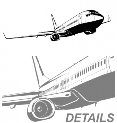commercial airliner vector image