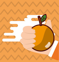hand holding orange fresh colored background vector image