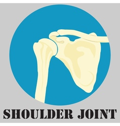 Human shoulder joint vector