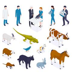 Isometric animals veterinary set vector