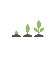 planting seed sprout in ground vector image