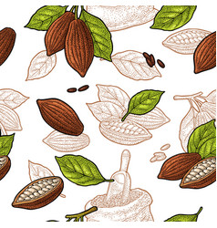 seamless pattern with leaves and fruits cocoa vector image