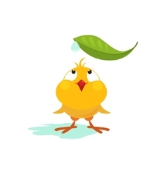 Small Chicken Looking at Leaf vector image