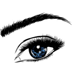 A beautiful blue woman eye vector