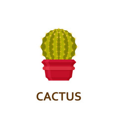 Cactus decorative houseplant in pot florist vector