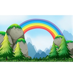 Colorful rainbow in the nautre vector image