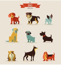 Dogs icons and vector image
