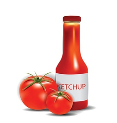 Ketchup bottle with tomatoes vector