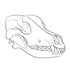 Object on white background skull dog sideways vector