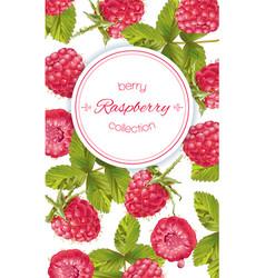 Raspberry vertical banner vector