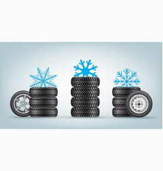 winter wheels set vector image
