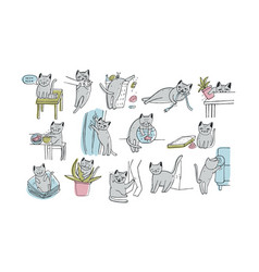 set of problem with cat behavior kitten meowing vector image