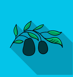 italian olives from italy icon in flat style vector image