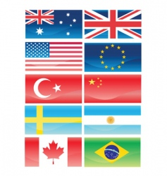 flags vector image vector image
