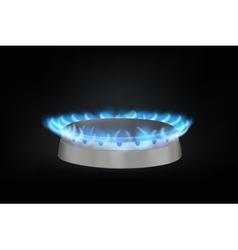 kitchen gas burner vector image