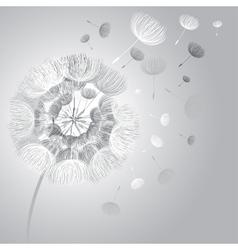 Abstract fluffy dandelion flower vector