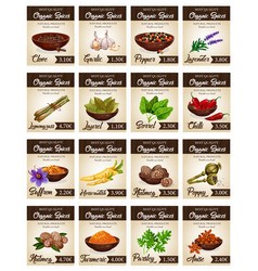 hot spices for seasonings and condiments poster vector image