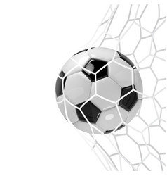 realistic soccer ball or football ball in neton vector image