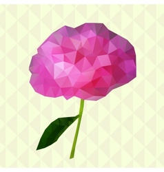 Geometric peony vector image vector image