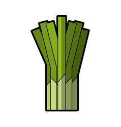 Celery fresh vegetable icon vector