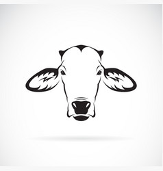 Cow head design on white background farm animal vector